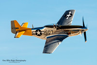 "1961 North American P-51D Mustang (N5441V) - ""Dolly"""