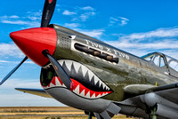 "Curtis Wright P-40N Warkawk (NL97WH) - ""Five x Five"""