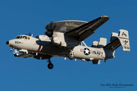 VAW-125 Tiger Tails