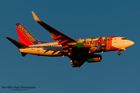 "Boeing 737-7H4 (N945WN) - ""Florida One"""