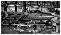 Grumman F-14 Tomcat (VF-211 Checkmates) - Wings Over the Rockies Museum